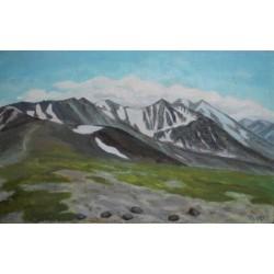 Перевал Каратюрек. Алтай